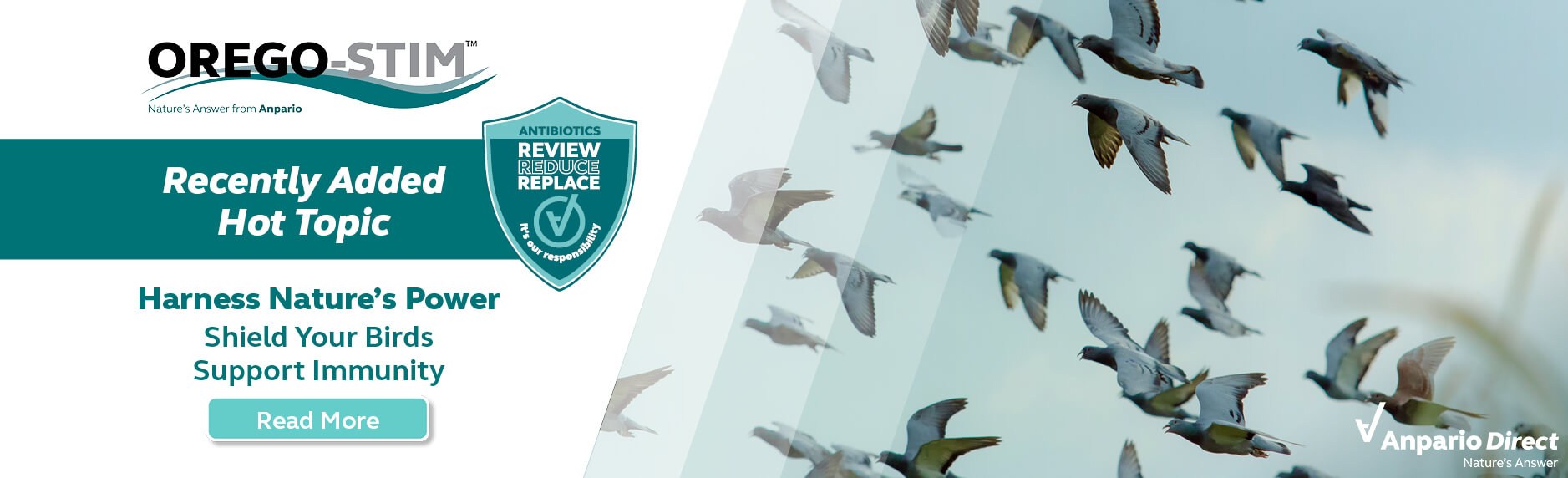Orego-Stim - Nature's Answer - to Supporting Bird Immunity