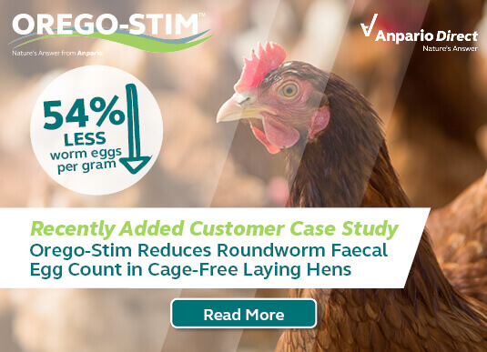 Orego-Stim Reduces Faecal Egg Count in Cage-Free Laying Hens