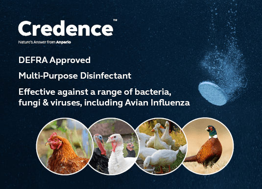 Protect Your Birds with Credence: Effective surface disinfectant against Avian Influenza