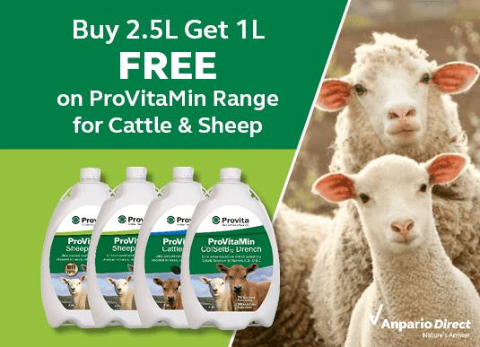 Buy 2.5L ProVitaMin Range, get 1L for FREE!