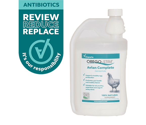 Support Poultry Performance with Orego-Stim