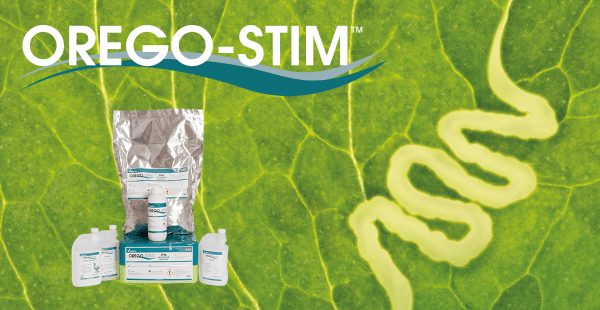 Trial Summary: Orego-Stim as a Natural Alternative to Coccidiostats